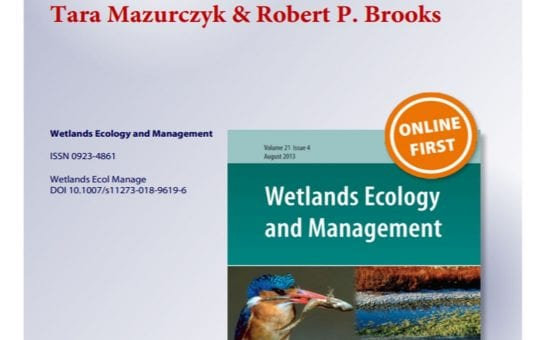 New Publication in Wetlands Ecology & Management